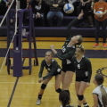 Mendon volleyball
